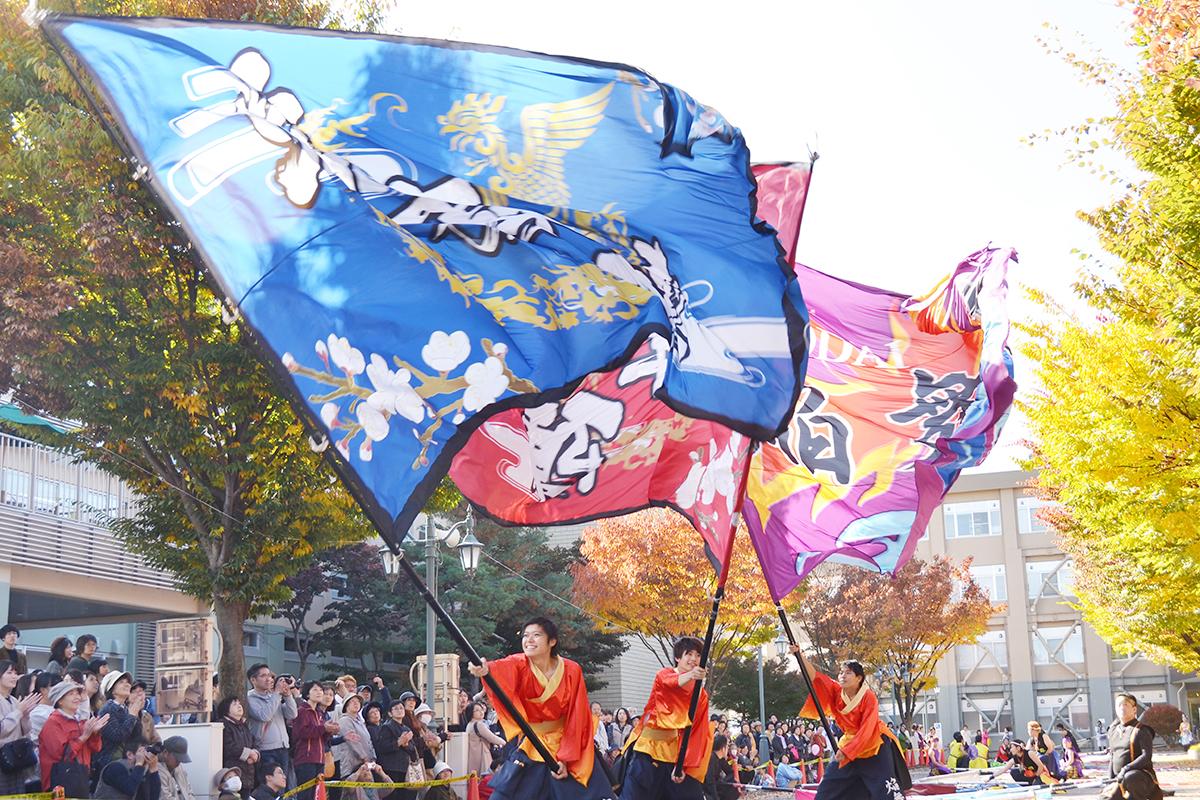 弘前大学総合文化祭「よさこい弘大」!