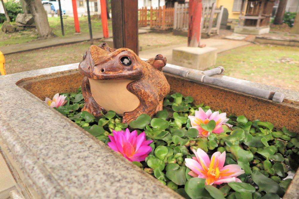 熊野奥照神社の蛙