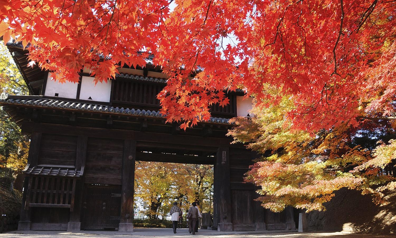 弘前公園の紅葉