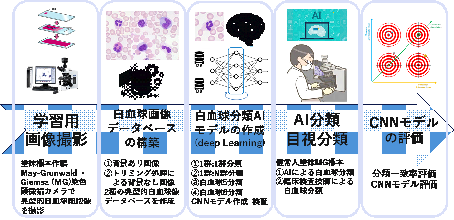 弘前大学医学部保健学科