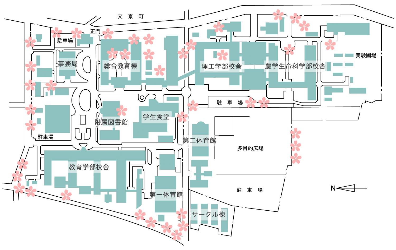 弘前大学文京町キャンパスさくらマップ